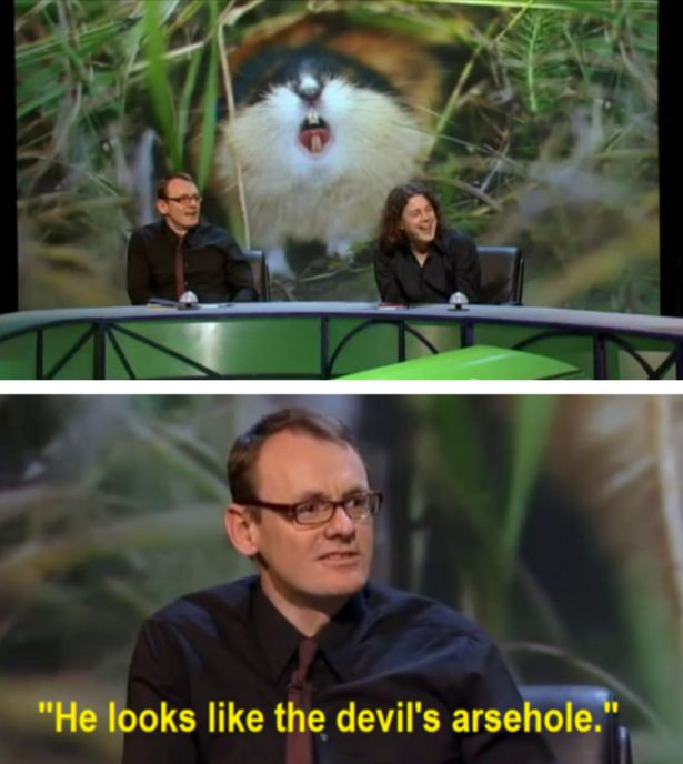19 Times Sean Lock Took Absurdism To New Levels