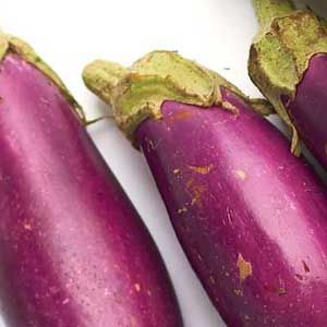 Growing Eggplant, I Like Buying My Seedlings Instead Of Starting From Seed  Because They Are