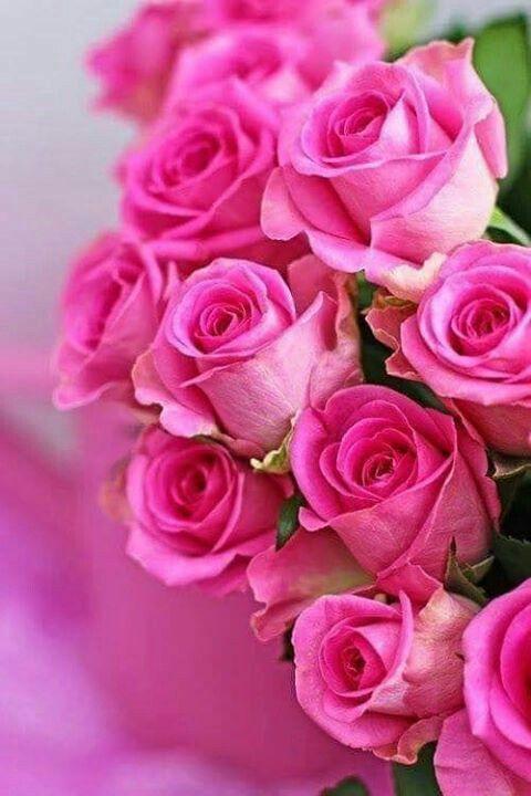 Оксана с днем рождения картинки красивые цветы, хочу работать