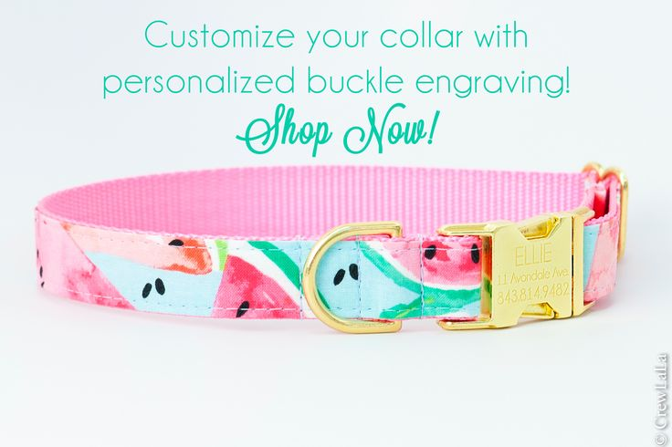 American Made Dog Collars, Bow Ties, Girl Bows, & Leashes – Crew LaLa