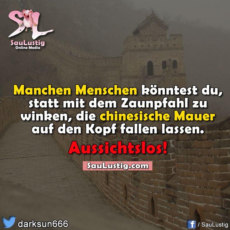 Manchen Menschen könntest du, anstatt mit dem Zaunpfahl zu winken, die chinesische Mauer auf den Kopf fallen lassen. Aussichtslos!