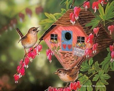 Birds' house: Birdhouses, Bird Paintings, Art, Bird Houses, Garden, Photo, Birds