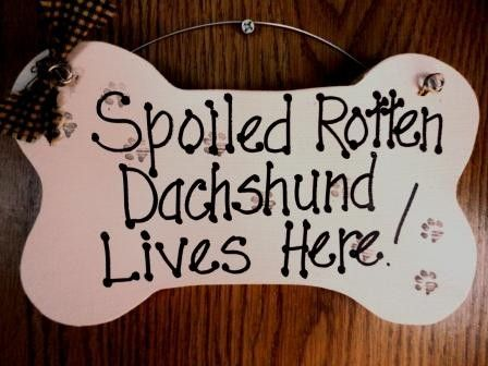Dachshund Dog Sign on wood, spoiled rotten , bone shape on Etsy, $10.00