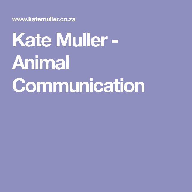 Kate Muller - Animal Communication