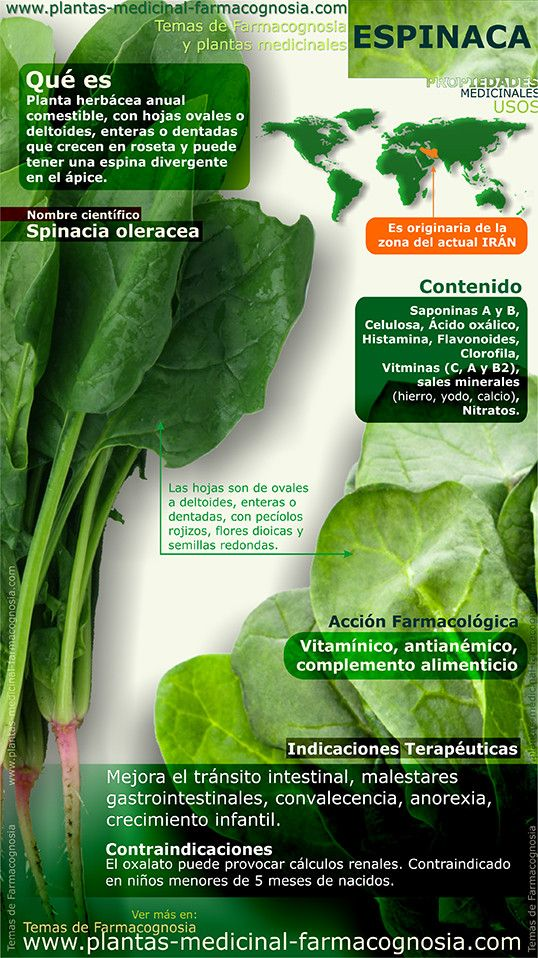 Awesome Health info are offered on our web pages. Read more and you wont be sorry you did. Herbal Remedies, Health Remedies, Natural Remedies, Health And Nutrition, Health And Wellness, Health Tips, Sante Plus, Spinach Benefits, Coconut Health Benefits