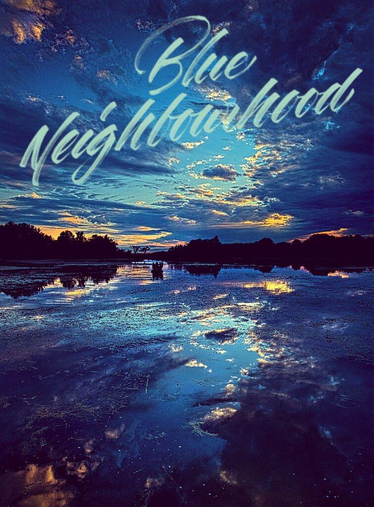 Blue neighborhood - troye sivan