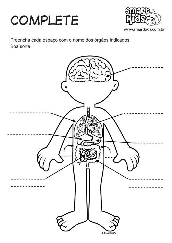 Mejores 74 imágenes de cuerpo humano niños en Pinterest | Cuerpo ...