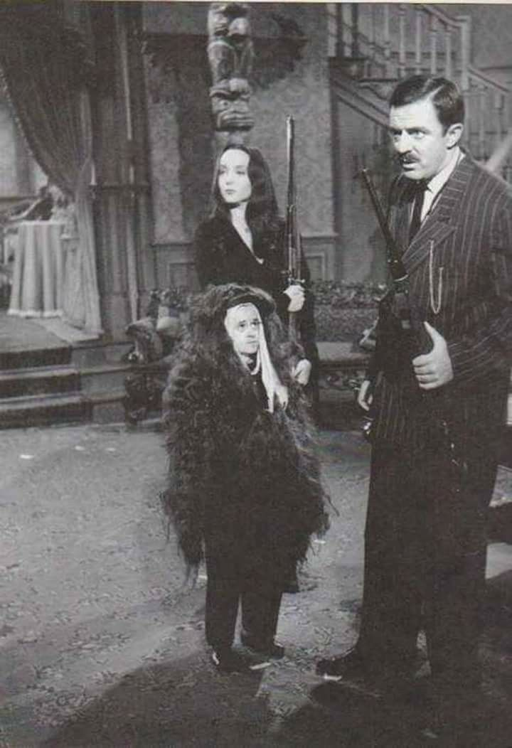 Have you ever seen Cousin Itt's face? Check out this rare picture of Carolyn Jones, Felix Silla (showing the face beneath Cousin Itt's hair) and John Astin on the set of The Addams Family.