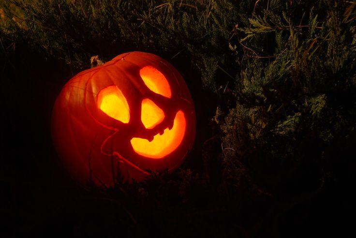 fot. Paulina :) #bydziubeka #konkurs #dynia #pumpkin #halloween