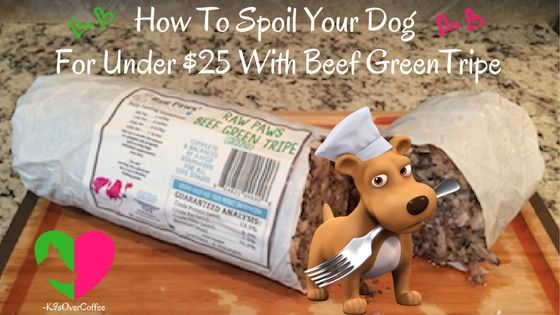 "K9sOverCoffee | How To Spoil Your Dog For Under $25 With Beef Green Tripe  Tripe is the nutrient rich lining of the stomach of a ruminant animal. ""Green"" means that the tripe has not been cleaned, bleached nor scalded. It is easily digestible because it contains high amounts of digestive enzymes meaning it treats diarrhea as well as constipation.  http://www.k9sovercoffee.com/nutrition/how-to-spoil-your-dog-for-under-25-beef-green-tripe-ground-from-raw-paws-pet-food/"