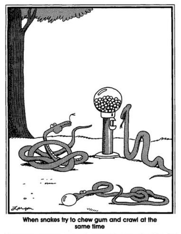 17 best images about far side cartoons on pinterest gary