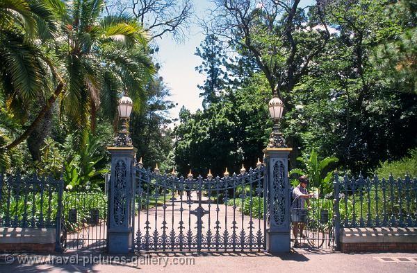 Adelaide botanic garden north terrace adelaide botanic for Landscaping adelaide north