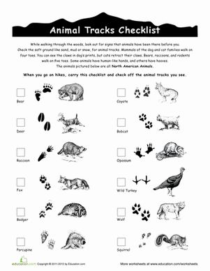 Next time you head outside for a hike or a camping trip, little adventurers can bring along this checklist of animal tracks to log what they find!