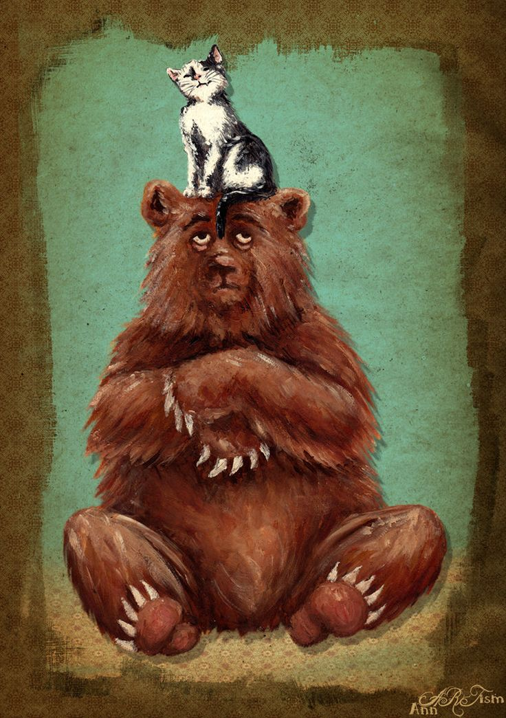 Картинки с медведем и кошкой