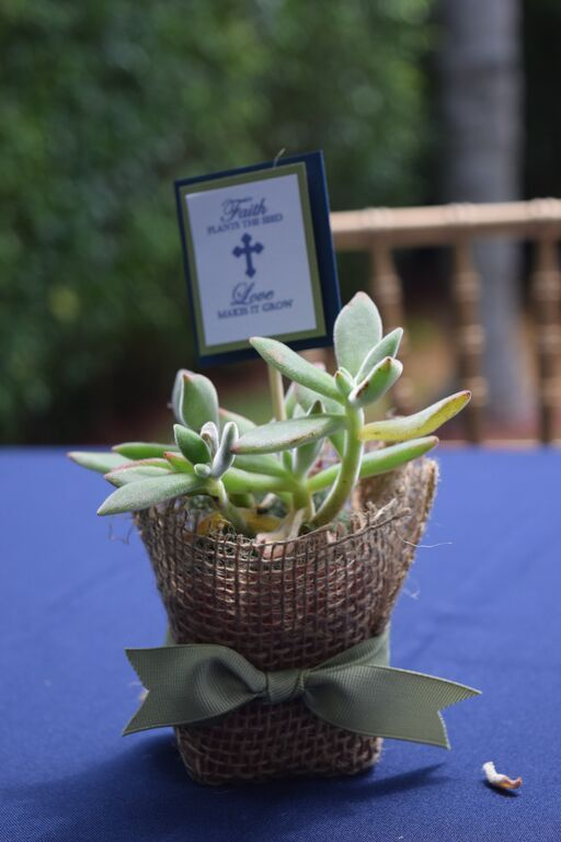 "First Communion Favors with succulents. ""Faith Plants the Seed, Love makes it grow"""