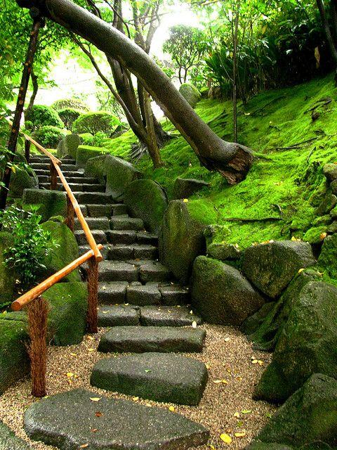 Stairs to Hōkoku-ji Temple in Kamakura / Japan