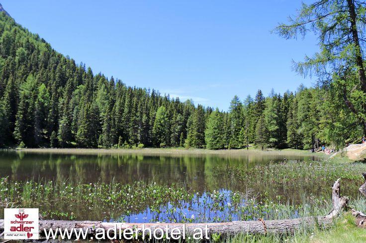 Wie wär`s mit einer Wandeung zum idyllischen Grünsee oder Schwarzsee?