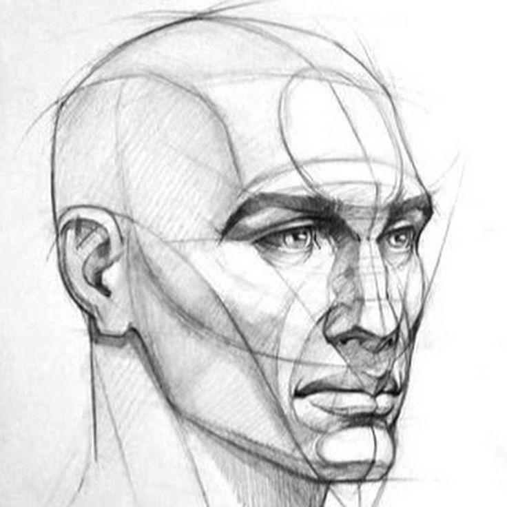 нашем рисунок головы человека картинки фирмы обращался мне
