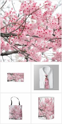 Spring Hanami Festival. New Products Added! Gorgeous fresh pink Japanese Cherry Blossoms, photographed during the annual spring festival in Kyoto, Japan.