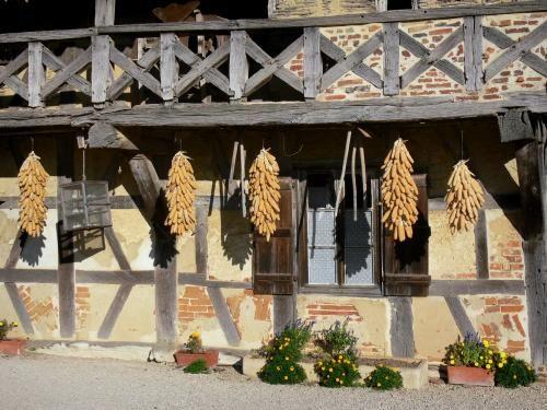 """Le fattorie con i tipici camini """"saraceni"""", il Museo della Bresse, il pollame di qualità... - Nota per il pollame che si fregia del marchio di Denominazione…"""