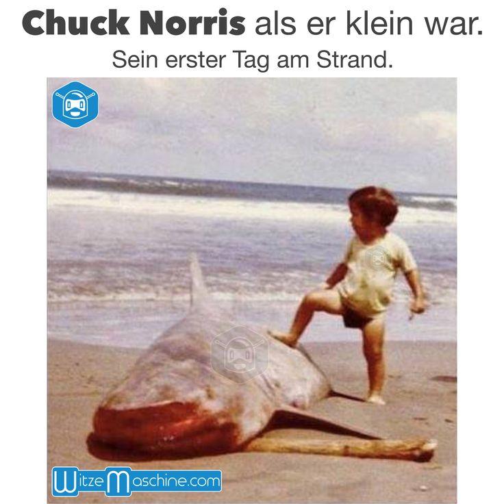Chuck Norris als er klein war - Sein erster Tag am Strand - Toter Hai