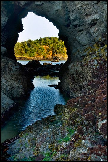 ... rock at low tide, Trinidad State Beach, Humboldt County, California
