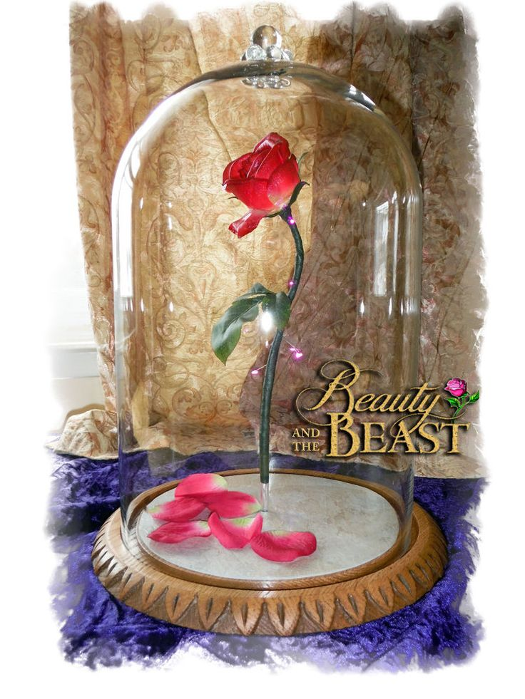 disney beauty and the beast enchanted rose fairy tale
