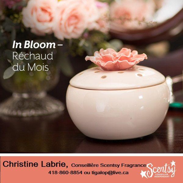 Réchaud Scentsy de Luxe In Bloom   Ajouter une touche de nostalgie à votre comptoir de salle de bain ou à votre table de nuit avec ce beau réchaud. Il est surmonté d'une fleur et il cache à l'intérieur le plus précieux des parfums. Parfait pour les chambres ou une salle de bain privée, In Bloom remplit l'espace de parfums de rêve sans la lumière.