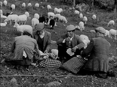 Sardegna.Spuntino tra pastori