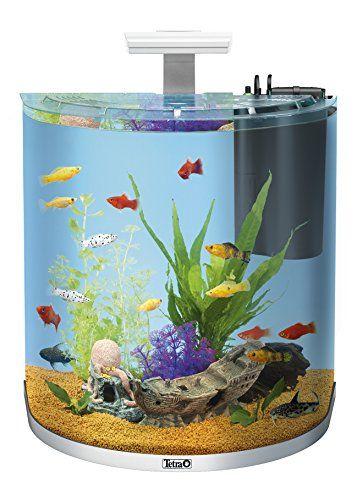 Tetra AquaArt Explorer Line Aquarium Komplett-Set, 60 Liter, mit gewölbte Frontscheibe, langlebiger LED-Beleuchtung, ideal für die Haltung von tropischen Zierfischen