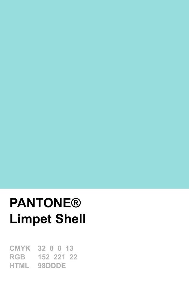Pantone 2016 Limpet Shell