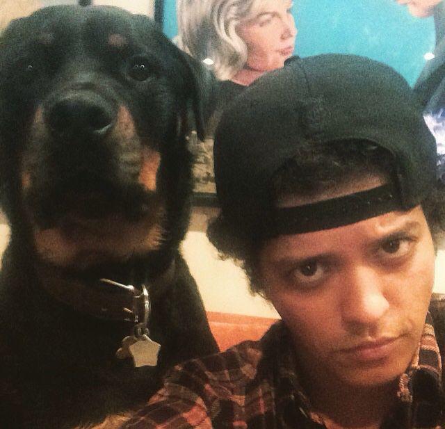 Bruno Mars                                                                                                                                                      Mais