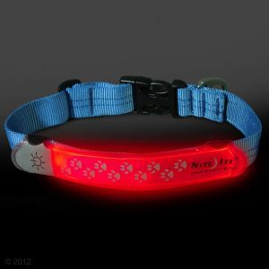 Reflecthalsband en hondenaccessoires goedkoop bij zooplus: NiteDawg halsband cover