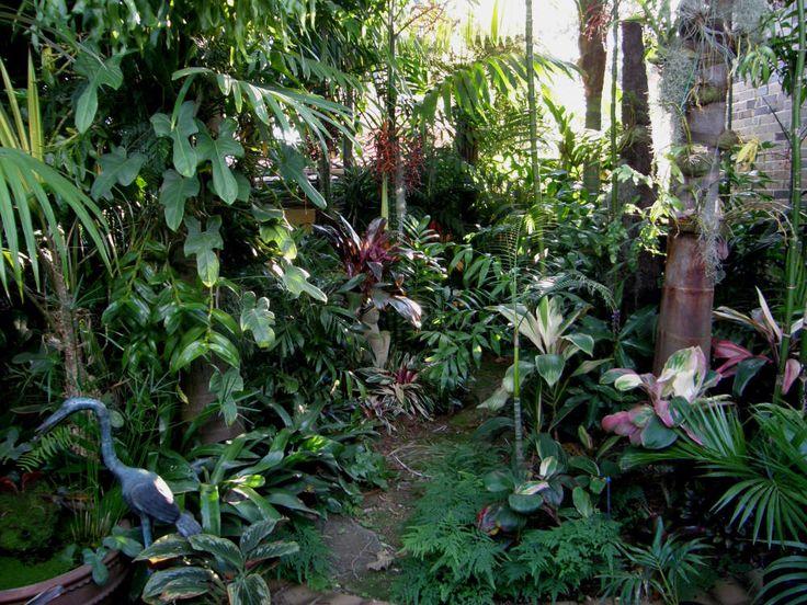tropical garden ideas - Tropical Garden 2016