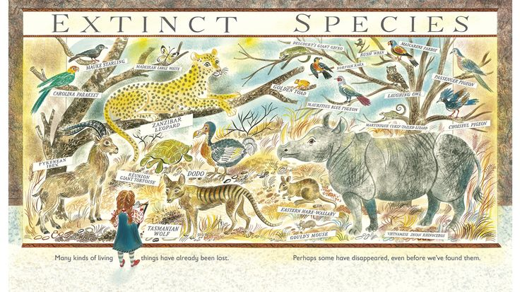 Mary Walker reviews one British and three Kiwi non-fiction books for children of various agesand finds that, generally, they're being done well. Here are