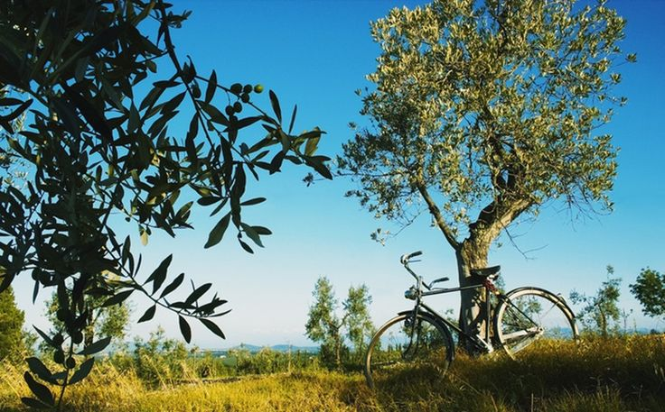 Day trip to the Chianti area