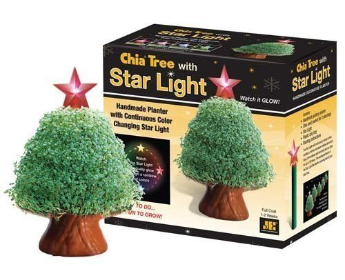 17 Best The History Of The Chia Pet Images On Pinterest