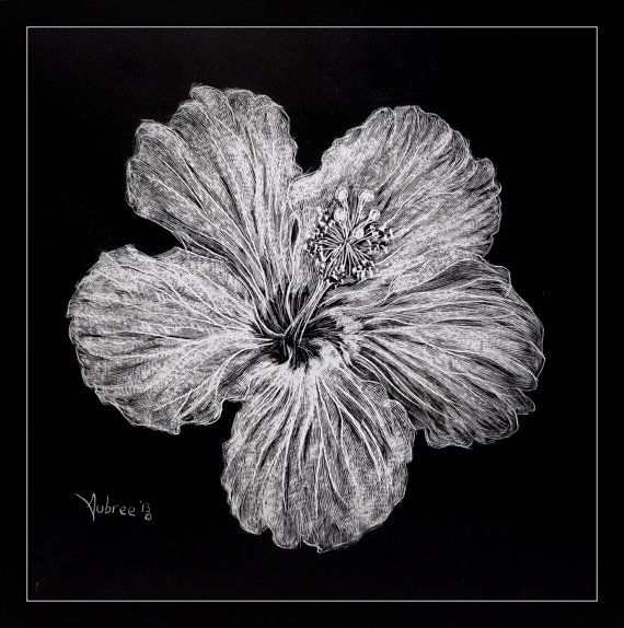 Hibiscus Scratchboard Flower -Artist Print on Etsy, $12.00 ...