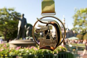 Disneyland Half Marathon 2014 - runDisney