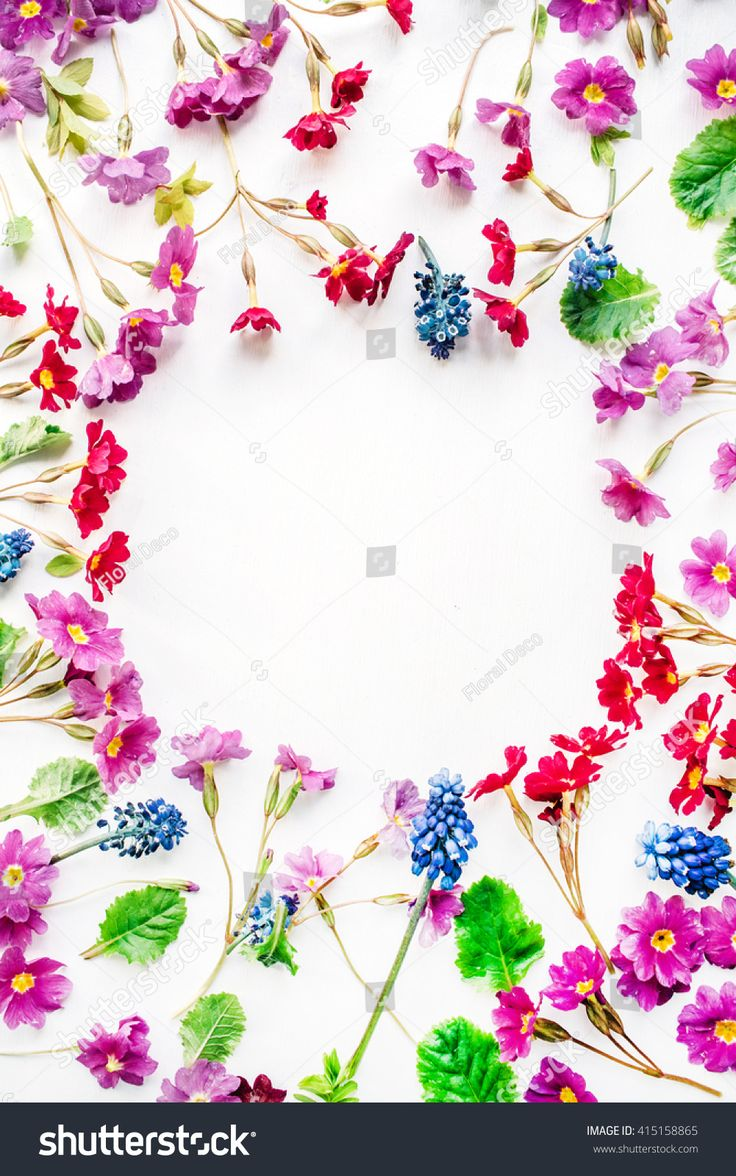wreath frame with wildflowers isolated on white background. flat lay, overhead view