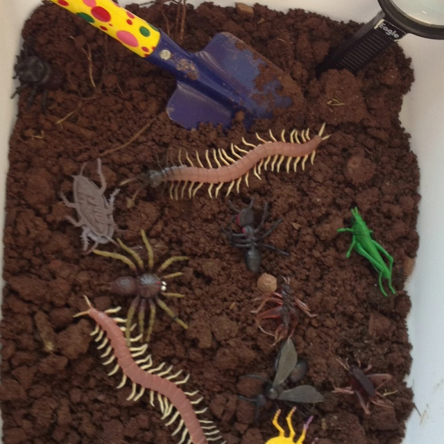 What about creating a graveyard sensory bin with dirt, little plastic skeletons, eye balls (Dollar Tree balls), plastic spiders, bats, etc.?