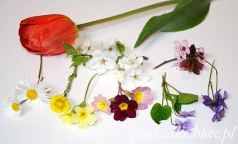 jadalne kwiaty wiosna, edible flowers