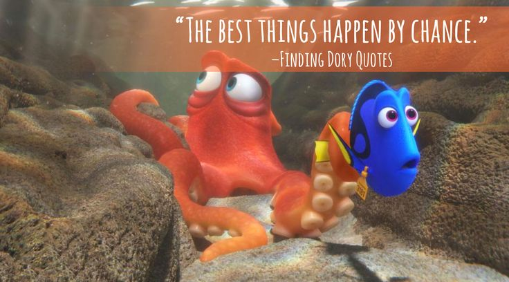 """Finding Dory Quotes - Entire LIST of the BEST movie lines in the movie! """"The best things happen by chance."""""""