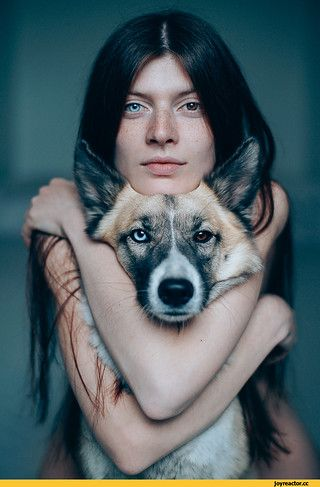 девушка-собака-гетерохромия-живность-2113151.jpeg (601×900)