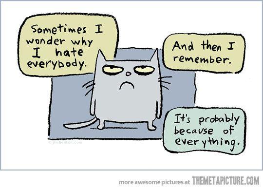 Sometimes I wonder and then I remember.