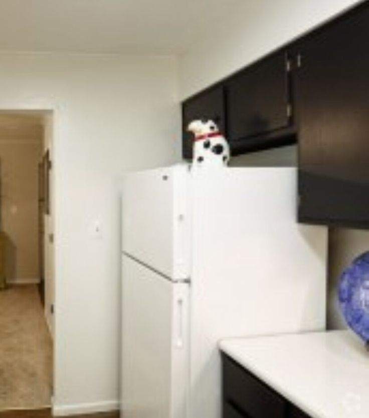 Jefferson Creek Apartments: 17 Best Images About Fort Wayne On Pinterest