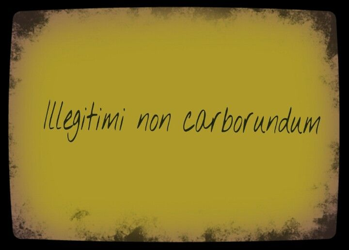 "I've always wanted a tattoo of this saying ""illegitimi non carborundum"" it means ""don't let the bastards grind you down"""