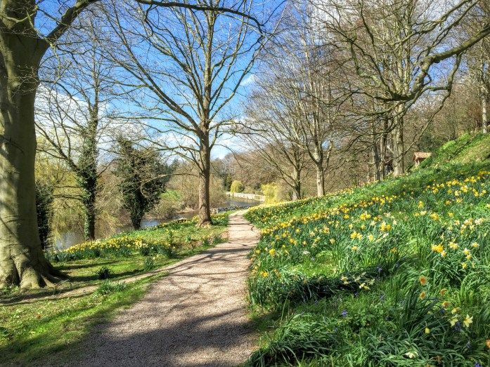 The National trust Weir gardens. We had every kind of weather on our trip, but it was worth it to see the abundance of daffodils bringing in Spring. | The Urban Wanderer | Manchester based Outdoor and Travel Blog