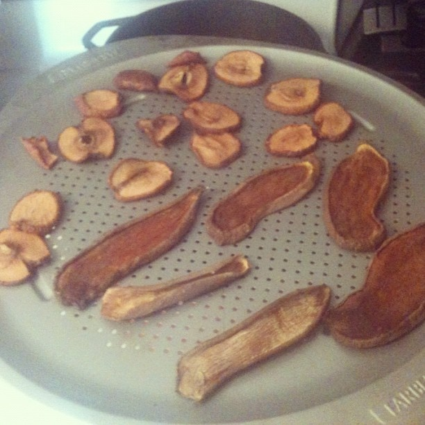 Nichole's Modern Homestead: All Natural Homemade Dog Treats...so easy...1/4 inch slices of apples, and sweet potatoes. lay flat on a cookie sheet and pop them in the oven at the lowest setting you have x 10-12 hrs. Better yet use a food dehydrator
