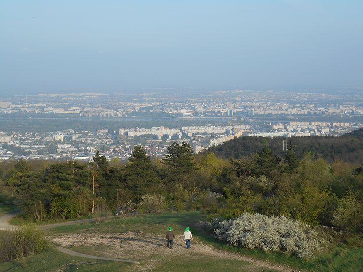Hármashatár-hegyi Guckler Károly kilátópont (Budapest III. kerület) http://www.turabazis.hu/latnivalok_ismerteto_362 #latnivalo #budapestiii.kerulet #turabazis #hungary #magyarorszag #travel #tura #turista #kirandulas